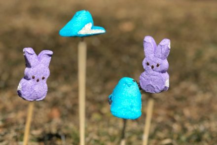 Peeps on Sticks