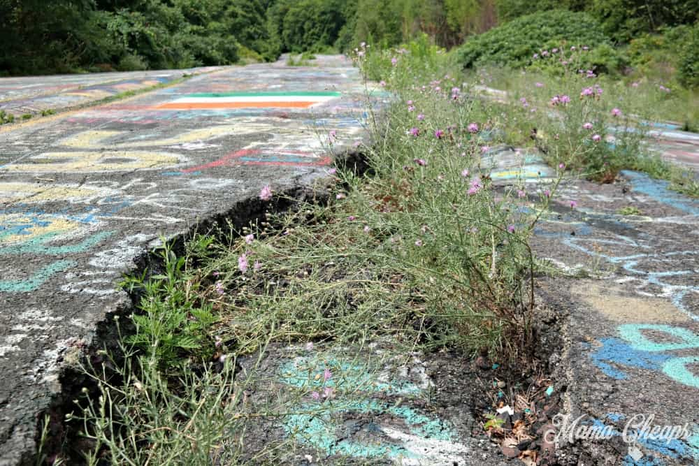 Centralia Graffiti Highway 5