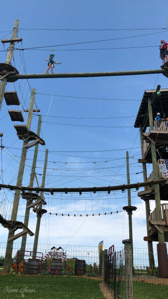 Ropes Course Top Level Hellericks