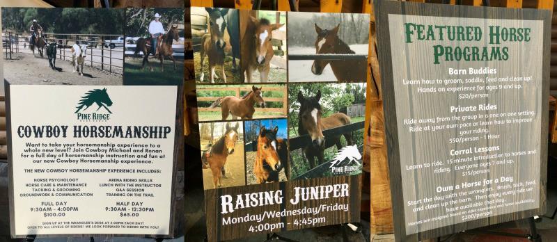 Pine Ridge Horse Programs