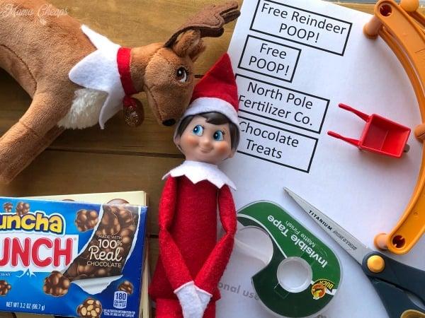 Reindeer Poop Supplies