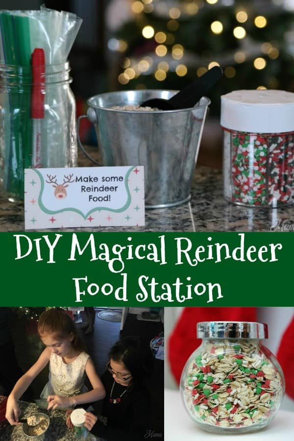 DIY Magical Reindeer Food Station