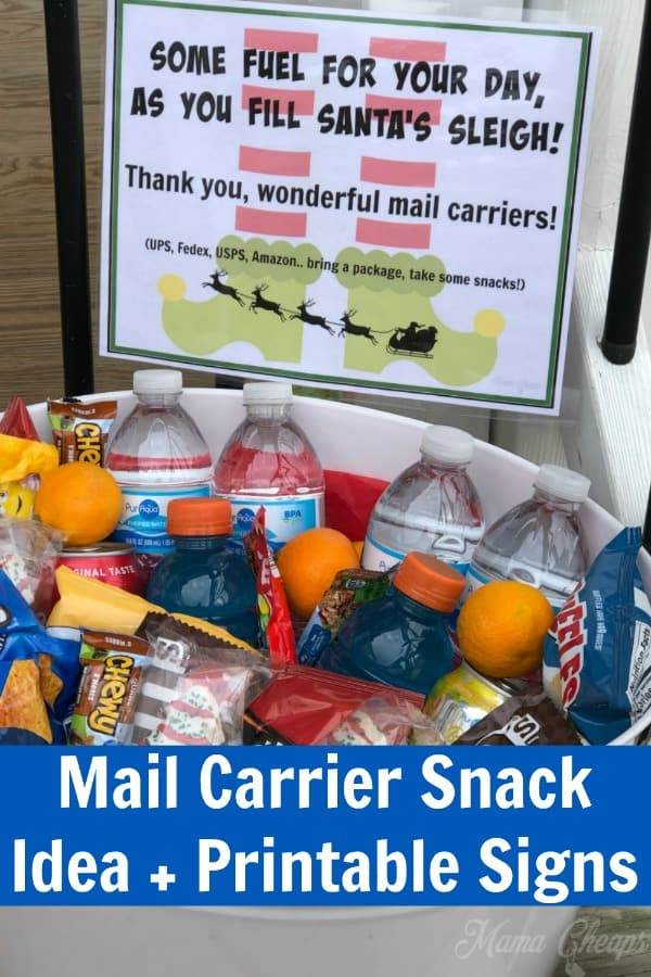 Mail Carrier Snacks PIN 1