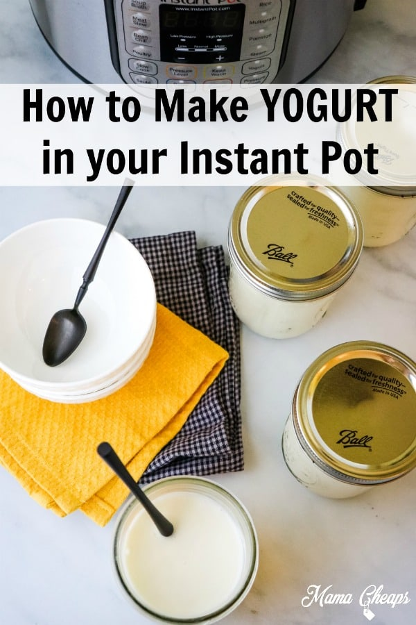 DIY Instant Pot Yogurt PIN 1