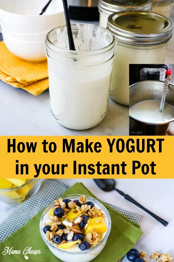DIY Instant Pot Yogurt PIN 2