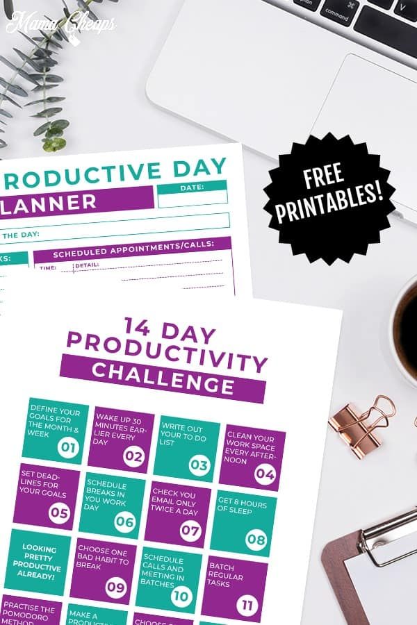 You can grab ourProductive Week Planner & Weekly Challenge_#5_Pin MC printable tags right here. Simply enter your email address in the box and opt-in to receive our free newsletter. Check your inbox for this printable, which you will receive as a subscriber bonus.