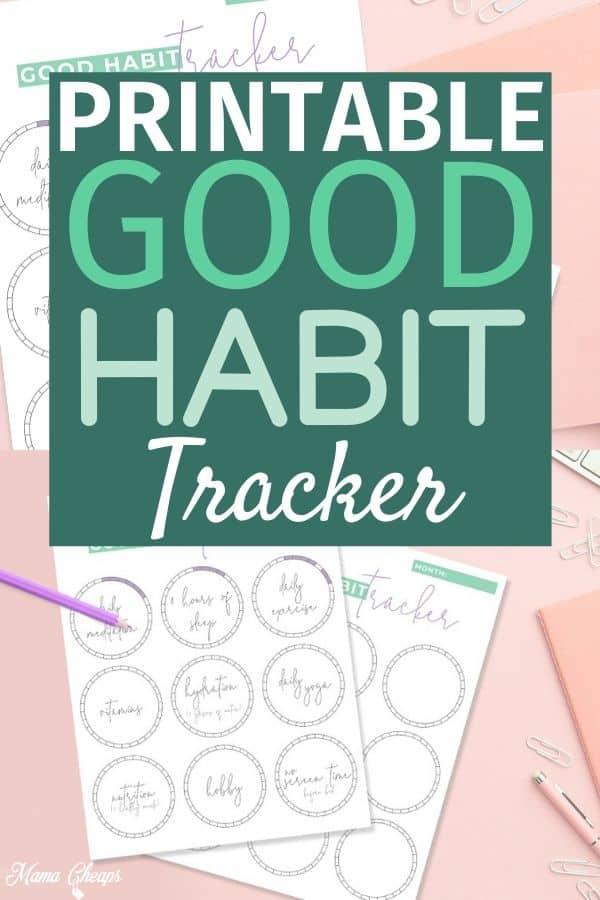 Good Habit Tracker PIN 2
