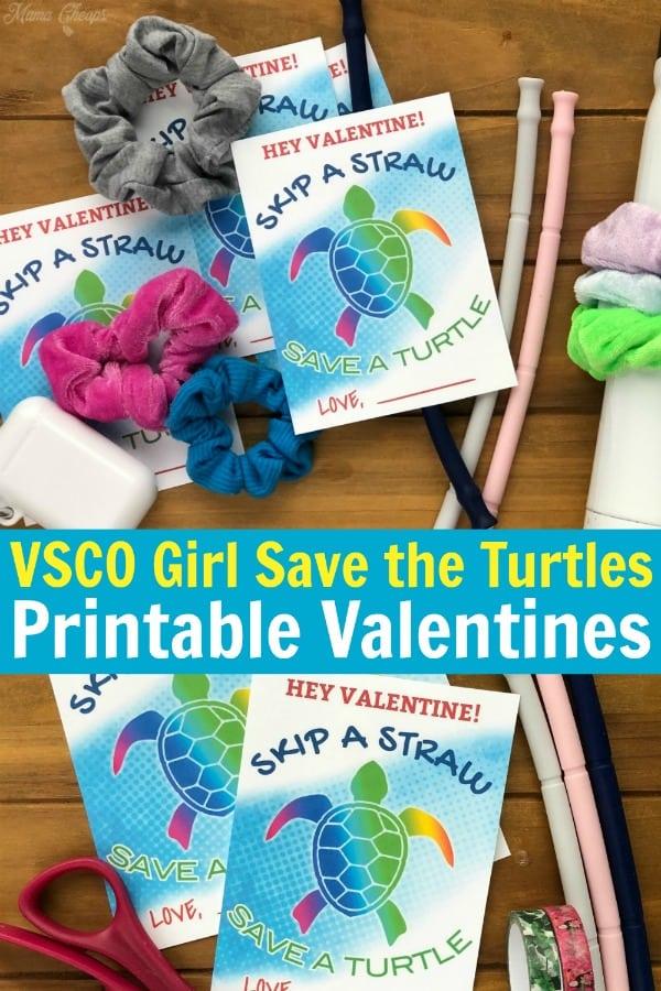 VSCO Girl Straw Valentines PIN