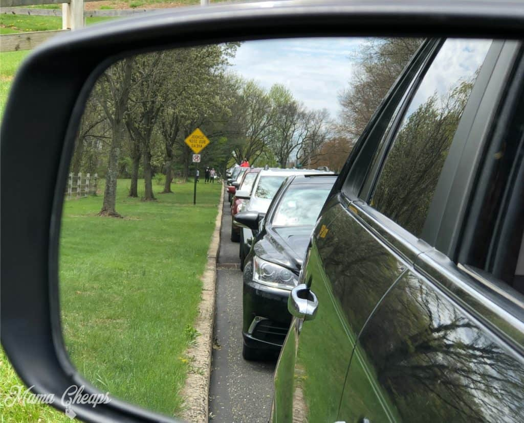 Car Birthday Parade Staging