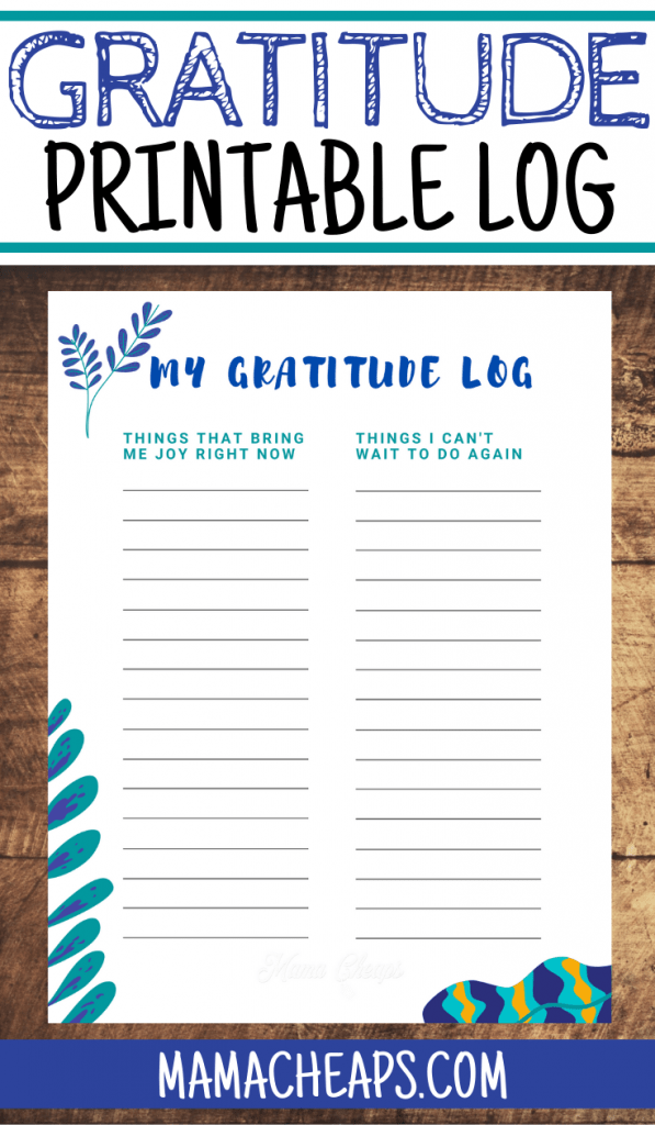 Gratitude Log PIN