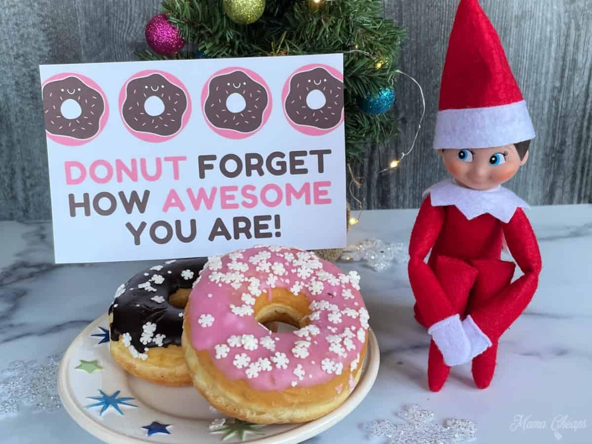 Elf Brings Donuts HERO