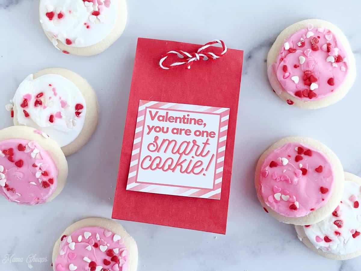 Smart Cookie Valentine HERO
