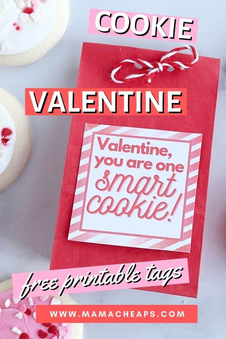 Smart Cookie Valentine Pin