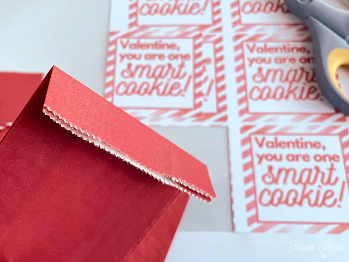 Smart Cookie Valentine folded bag
