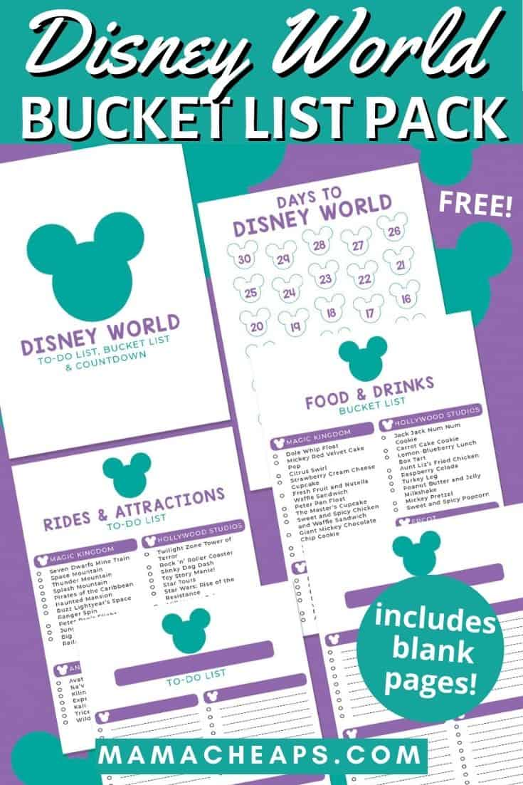Disney Bucket List and Countdown PIN