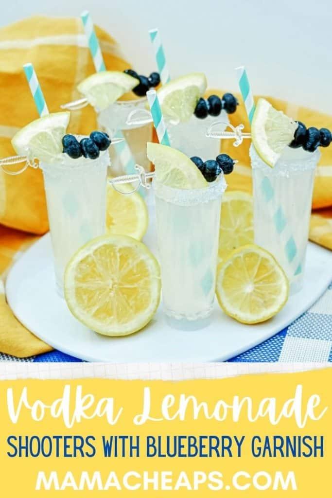 vodka lemonade shooters PIN