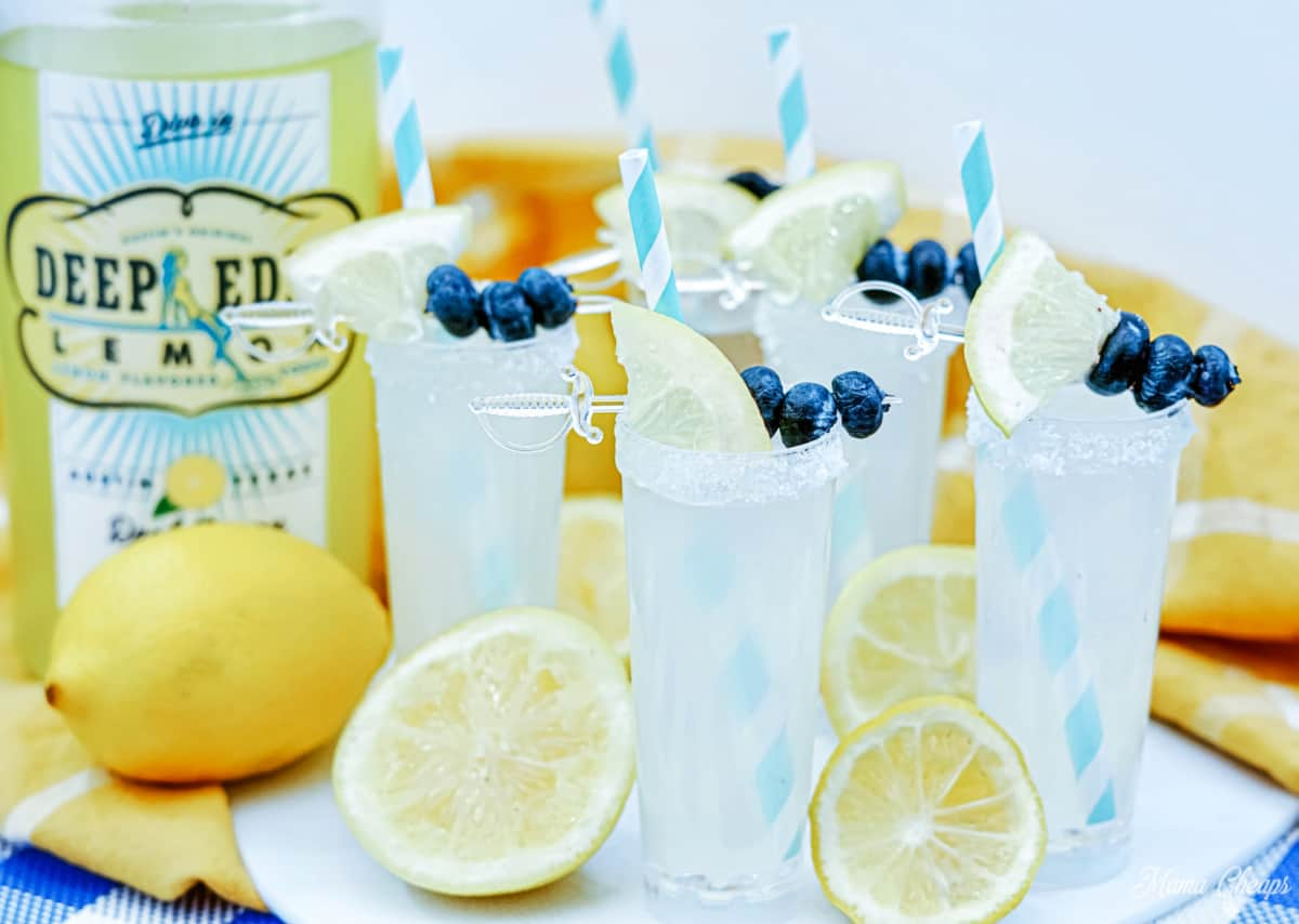 vodka lemonade shooters hero