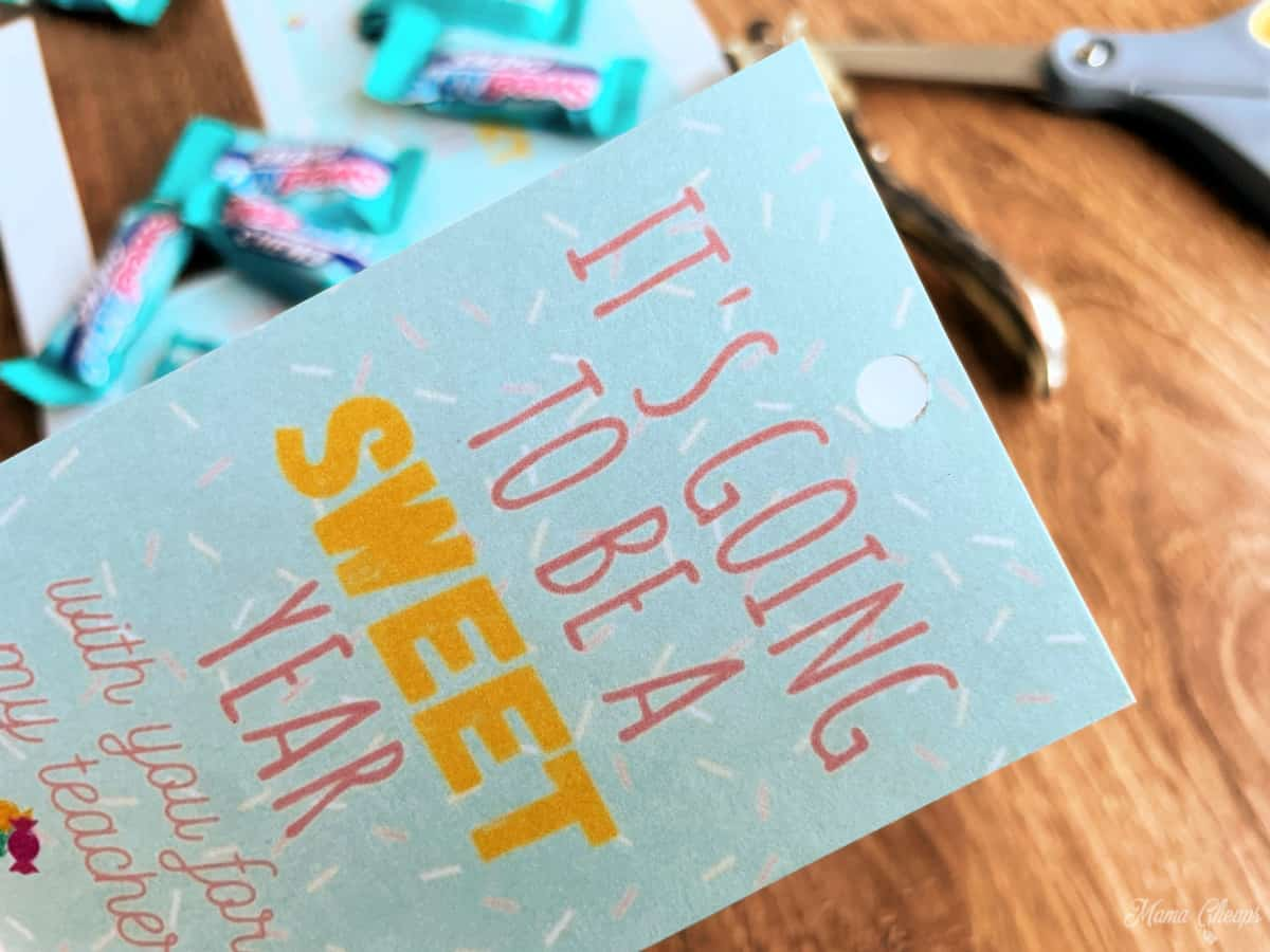 SWEET Year Tags with Hole