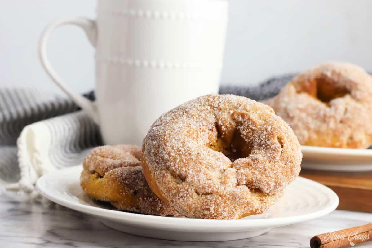 pumpkin air fryer donuts HERO